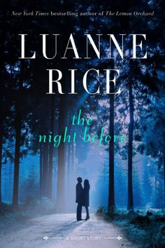Tome Tender: The Night Before by Luanne Rice