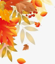Autumn leaves, Fall, Autumn, Plant PNG Image
