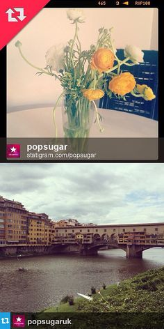 The Right Way to Repost Instagram Photos - www.popsugar.com
