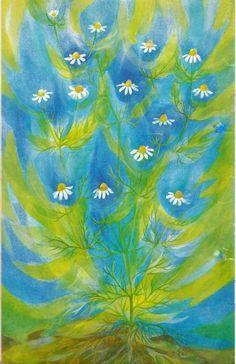 walther roggenkamp | Garden | Pinterest | Tags