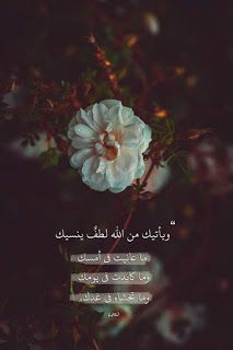 Islamic Quotes To Remained Us Of How Blessed Lucky We Re Beautiful Quran Quotes Islamic Quotes Quran Quotes Love