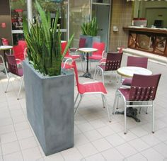 Planters at cafe