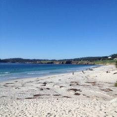 Carmel-by-the-Sea is where we honeymooned, and try to go back as often as we can. Carmel, Carmel Highlands, Carmel Valley, Big Sur... I could spend a lifetime exploring this area.