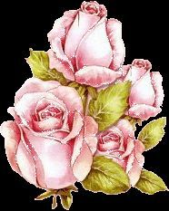 pink roses vintage - Google Search