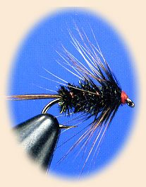 Fly Tying Patterns, Outdoor Life, Trout, Fly Fishing, Homemade Fishing Lures, Outdoor Living, Brown Trout, Fly Tying, The Great Outdoors