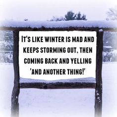 Snow Much Fun, Winter Storm, Winter Wonder, Blog, Fun Stuff, Laughter, Gifs, Weather, Vacation