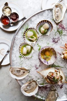 raw bar: oysters, ceviche, and sauces for spicing it up!
