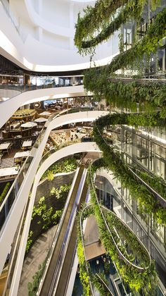 Architecture and interior design for a shopping mall in Bangkok, Thailand Floating Architecture, Green Architecture, Futuristic Architecture, Sustainable Architecture, Amazing Architecture, Architecture Jobs, Shopping Mall Interior, Retail Interior, Contemporary Landscape