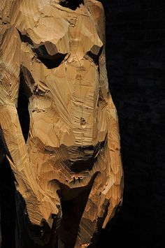 Aron Demetz - Venezia - sculpture I love how this carved wood looks like it could be a painting Modern Sculpture, Wood Sculpture, Photo Sculpture, Metal Sculptures, Abstract Sculpture, Bronze Sculpture, Installation Art, Figurative Art, Wood Carving