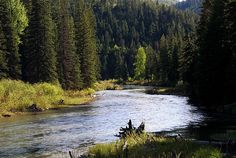 Montana fly-fishing