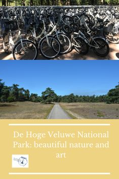 Everything you need to know for a visit to De Hoge Veluwe National Park. History, facts, museums, flora, fauna, what there's to do and see. Europe Travel Guide, Travel Guides, Travel Destinations, Bucket List Europe, Travel Around The World, Around The Worlds, Best Places To Travel, Travel Aesthetic, Winter Travel