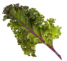 Blend it, bake it, sauté it or eat it raw in a salad, kale is packed with vitamins and is also a very useful source of folate and calcium.