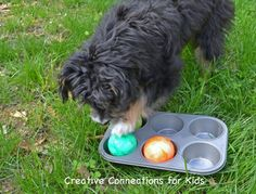 great diy toys for dogs