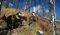 U can stay in your camp grounds with the rest of the city folk horse packing - great way to see the mountains.