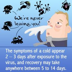 Home Remedies for Head Cold