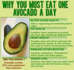 eat one avocado(butter fruit) a day