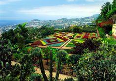 Faszinierende Vielfalt: Blütenparadies Madeira