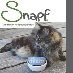 katzenmarkt.ch – Google+ Google, Cat Food, Dog Food