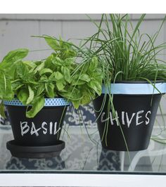 Keep your #herb pots labelled with #chalkboard paint!
