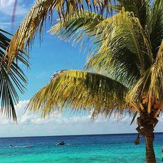Cozumel beach Cozumel Beach, Cozumel Island, Cruise, Waves, Outdoor, Outdoors, Cruises, Ocean Waves, Outdoor Games