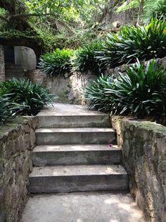garden path, mexico