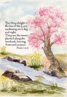 Psalm 1:2-3 But they delight in the law of The Lord...