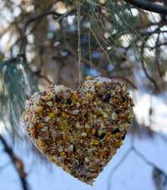 DIY Bird Feeder Craft for Kids! Heart Shaped to share the love with your feathered friends this Valentines Day <3