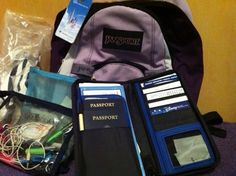 Learn which five essentials should go in your Disney Cruise Line carry on bag | PassPorter.com