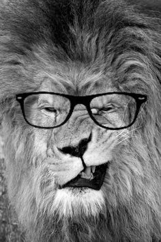 I love this face -- the inner lion in every meek librarian!