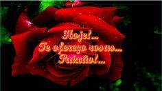 Hoje!    Te ofereço rosas    Paixão!