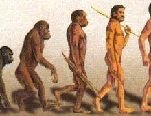 Mengupas tentang sejarah manusia purba diindonesia