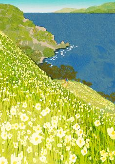 The hillside sparkles with the colours of the grass and flowers!