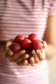 Holding plums