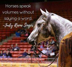 fastest speed index quarter horse