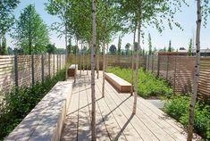 Der geschnitzte Garten   Koeber Landschaftsarchitektur