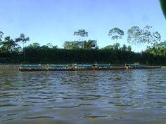 Laguna Cashibo-Cocha
