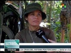 Colombia: excombatientes de FARC se reincorporarán a la vida civil