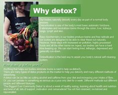 WHY Zija Detox Tea? Zija Tea is an Important Part of the Zija Weight Management System and Important for Everyone to Have Regularly!