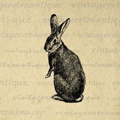 Digital Image Rabbit Graphic Bunny Printable Easter Spring Download Antique Clip Art. High resolution, high quality digital graphic from vintage artwork. This printable digital image is great for printing, transfers, and much more. Personal or commercial use. This image is high quality at 8½ x 11 inches large. Transparent background version included with every digital image.