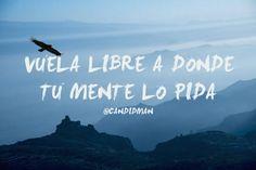 """""""Vuela #Libre a donde tu #Mente lo pida"""". @candidman #Frases #Motivacion"""