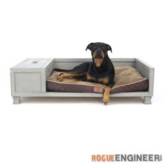 Check out this project on RYOBI Nation - Man's best friend should get to sleep in style right? If your dog is part of the family you can't just throw a cushion on the floor and call it a day. No, you need to build a proper bed for your bestie, and of course it should include toy storage, because, why not?   Click here to download the project plans for this How-To!