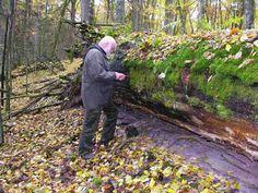 Olsztyńscy leśnicy właśnie przeszczepili grzybnię niezwykle rzadkiego i zagrożonego wymarciem miękusza szafranowego.