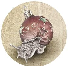 Snail Shell Ornament by James Ormiston