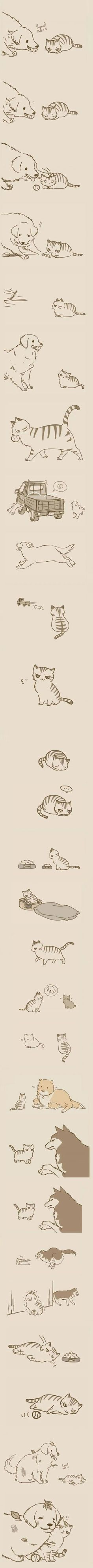 Perrys y gatos Animals And Pets, Funny Animals, Cute Animals, Crazy Cat Lady, Crazy Cats, Tierischer Humor, Neko, Cute Comics, Cute Images