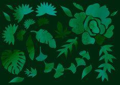 Viidakko kotona. Kuvitus. Illustration.