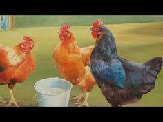 Saint-Saens: Carnival of the Animals~Poules et Coqs (Hens and Cockerals)