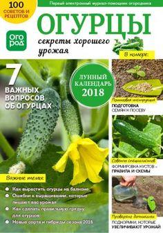 """Журнал """"В помощь огороднику"""""""
