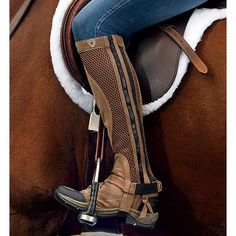 Ariat Terrain half chaps  Need to look for these in Cate's size.