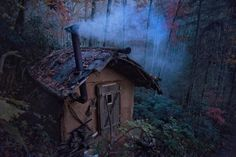 Here's What It's Like to Live in the Woods, Off the Grid