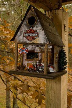 "Fall At The Biker Bird Hotel by Arthur ""Butch"" Petty"